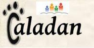 Caladan Consulting, Inc